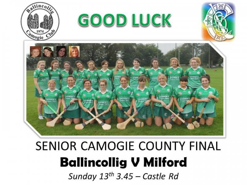 Camogie County Final Fixture