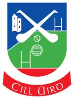 Image result for kilworth gaa crest
