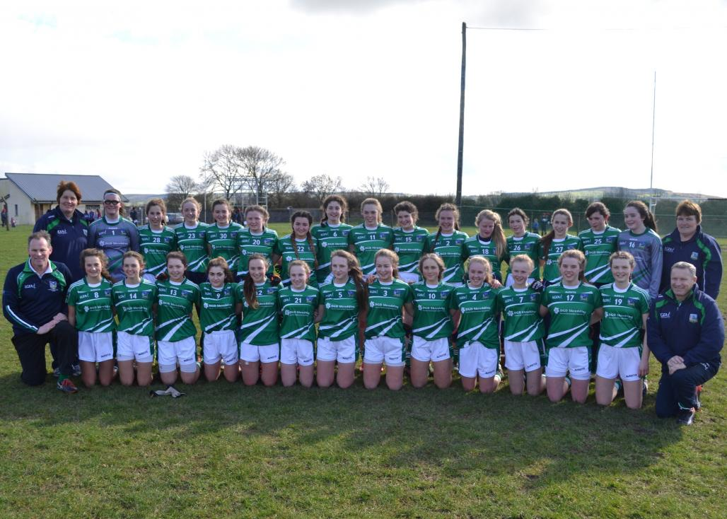 Limerick Ladies GAA