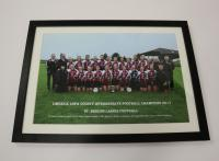St Brigids Intermediate Champions 2017