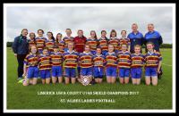 Limerick U14B Shield Champions: St Ailbes