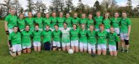 Limerick U14A Munster Finalists 2016