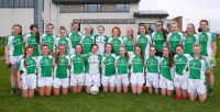 Limerick Under 14 County Panel 2015