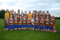 St Ailbes All Co League Champions 2014