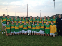 Monagea Senior Co Champions 2014