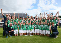 Limerick All Ireland U14C Champions 2015