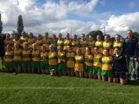 Ballylanders Senior County Champions