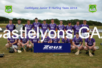 Junior Hurlers 2018