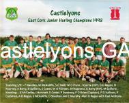 Castlelyons East Cork JHC 1993