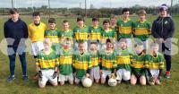 Castlelyons Féile Peile Team ' 15
