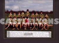 U14 Hurling 1981