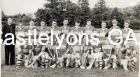 Castlelyons Junior A hurlers 1966