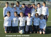 Avondale United U12 Premier Squad 2014/15