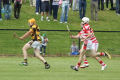 Junior A Champ v Ballygiblin 2014