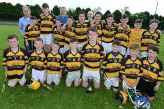 Buttevant Under 14 Hurlers 2016