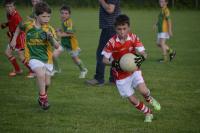 U10 boys who beat Leap, Friday, June 19th 2015 Photos: Aoife Hodnett O'Brien