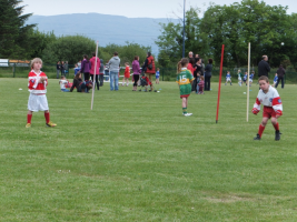 Action at Adrigole Monster Blitz June 2015