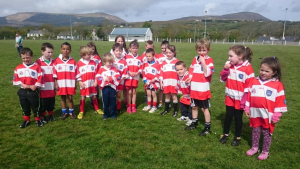 Adrigole Under 8s plus a few May 2015