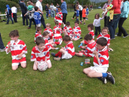 Party Time at U8 Monster Blitz Adrigole June 2015