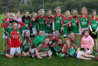 Ballinora U12 league winner 2014