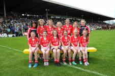 P Game v Kerry