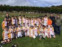 2017 Rebel Og West U12A Hurling Cup Champions