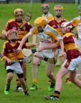 2016 U14A County Hurling Final vs Youghal