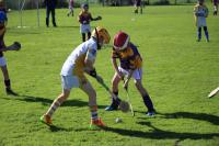 U10 Hurling League