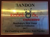 2016 Coaching Benchmark Gold Award