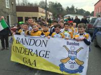 2016 St Patricks Day - Bandon Parade