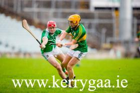 In Action V Limerick