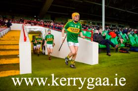 Proud & Loyal Kerry Hurling Servant