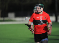 UCC vs NUIG - Fitzgibbon Cup 31.01.2019 - Photo Courtesy of George Hatchell