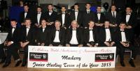 Muskerry Junior Hurling Team of the Year 2015