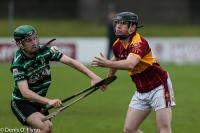 Co. SHC Relegation Playoff Douglas v Youghal 2017