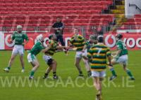 Glen Rovers v Killeagh