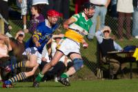 Barry Murphy Br Rvs v Ctwohill in Co SHC 2010