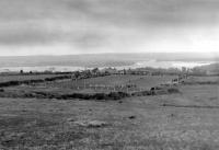 Passage Field 1952