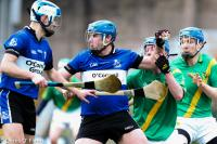 Co. IHC Pre-rd Dungourney v Sarsfields 201