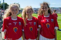 Cork v Waterford Munster SHC  S/F 2017