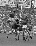 Teddy McCarthy 1987 Munster Final