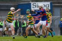 Co. SHC Q/F Blackrock v Erins Own 2016