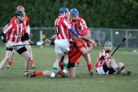 SHC 2013 Imokilly v Duhallow