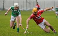 MSHL Cork v Limerick 2016