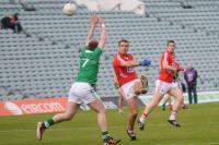 Munster JFC 2013 Limerick v Cork