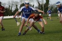 Munster Club IHC Final 2013