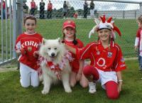 Burnfort NS Barks for Cork!