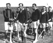 1931 All Ireland