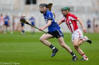 Co. SHC S/F Imokilly v Sarsfields 201