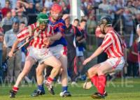 SHC Erins Own V Imokilly
